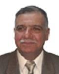 محمد صالح السعدي